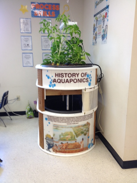 UFF Green Thumb system installed at the McKitrick Elementary school.
