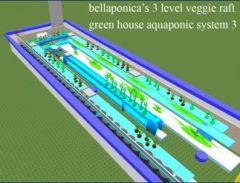 bellaponica 3