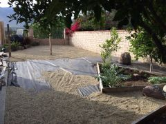 Yard 1