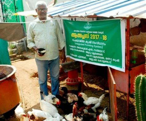 Backyard poultry farming.jpg