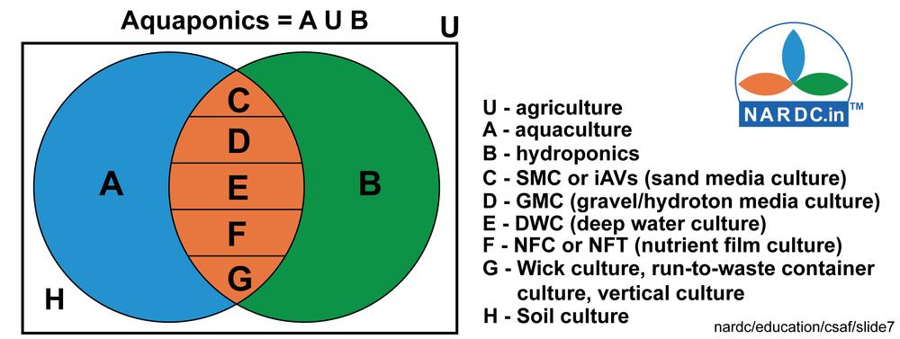 Slide 7 aquaponics definition.jpg
